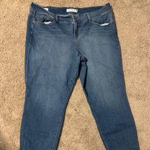 Torrid jeans size 24T